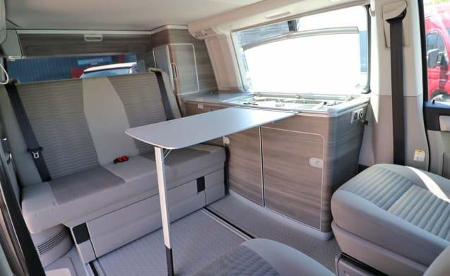 Ocean 2019 – VW California Ocean 2019