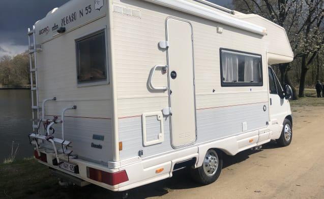 Compact mobile home pegaso 55