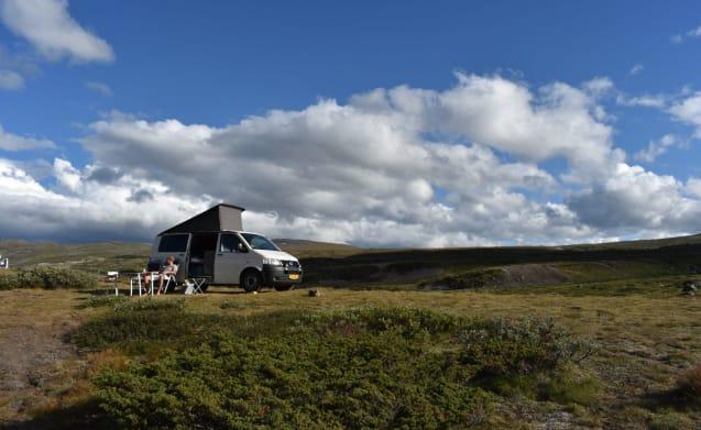 VW Transporter T5 (4x4) for the primitive camper