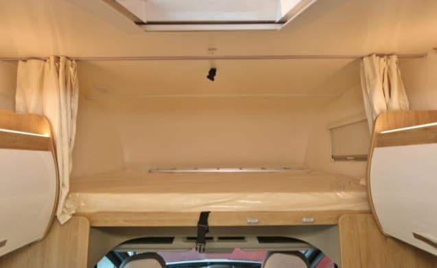 Alcove Ci Horon 90M Ford 170hp 2019