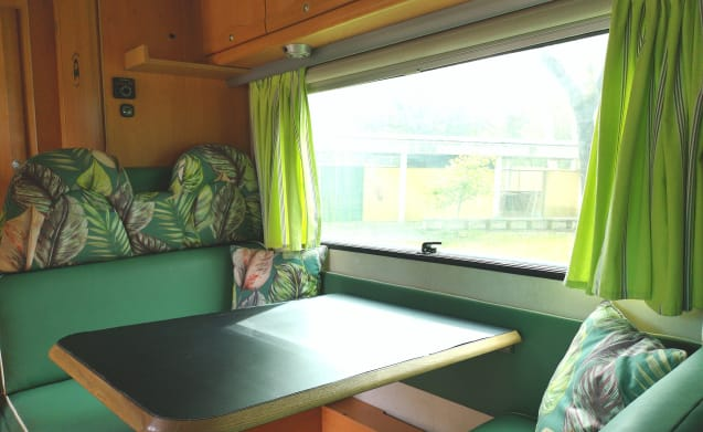 Amália – Ga op avontuur met deze geweldige paarse bus (gelegen in Portugal)