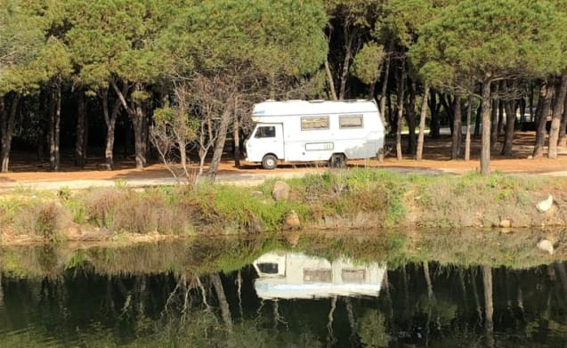 Cusidore – Campervan Sardinia Vintage Adventure