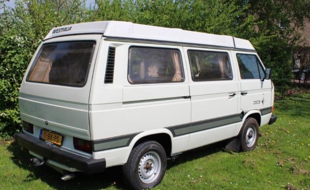 The Joker – For rent Complete Volkswagen Transporter Westfalia Joker turbo diesel