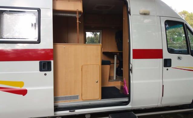 Handzame bus-camper Fiat Ducato grand volume – A complete well cared for: Fiat Ducato BUS CAMPER.
