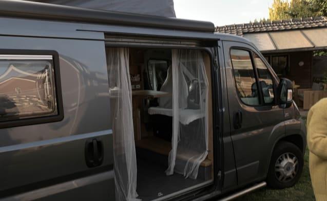 In tour con un ampio autobus Fiat per 2 persone