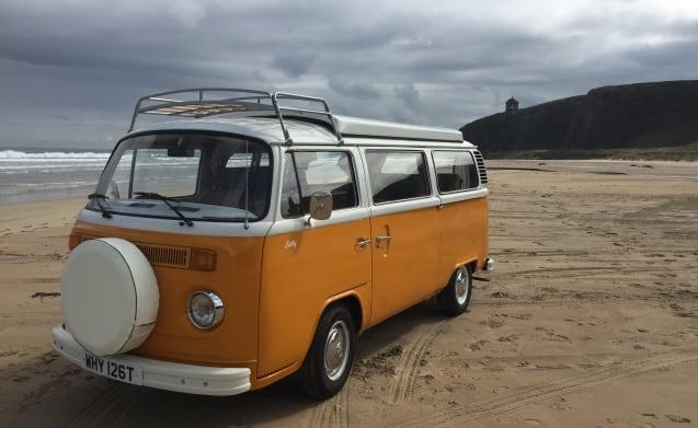 Sally – Sally, VW 1979 Bay Window Camper