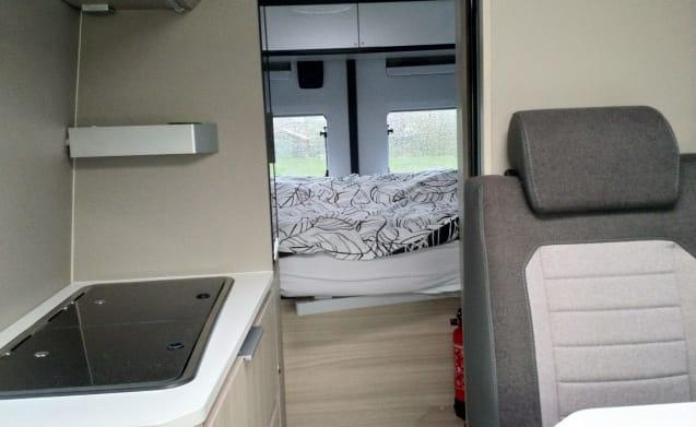 New luxury Adria Twin 600 bus camper