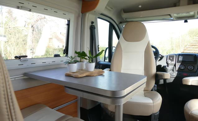 Comfortable spacious bus camper