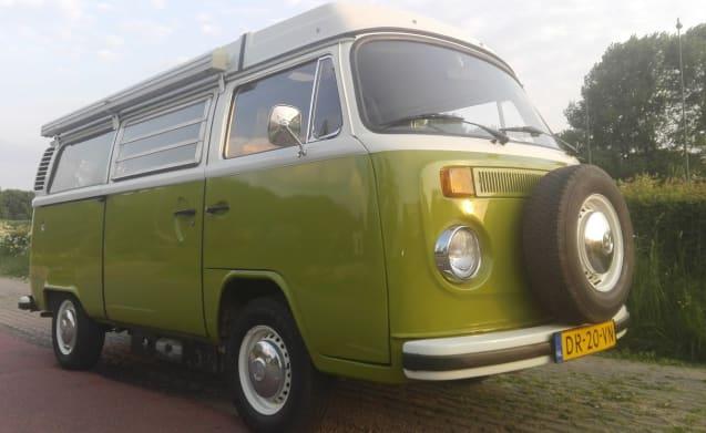 Volkswagen T2 - Scover