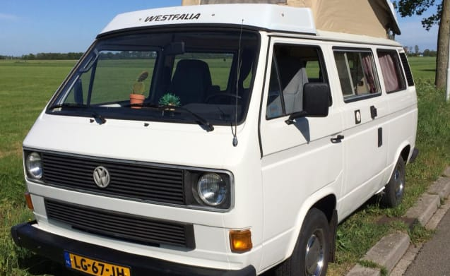 Lady Lou – Original Volkswagen T3 Bus Camper - Lady Lou for 4 people!