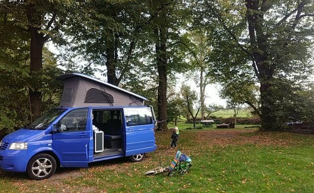 VW T5 Multivan Camper automatic