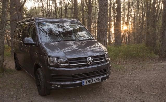 The Gibster – Brand New VW T6 Campervan