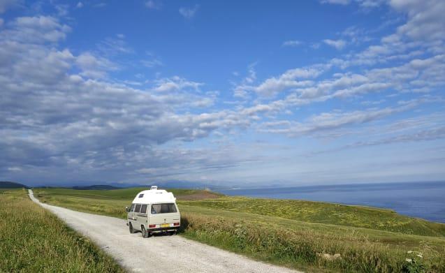 """Cassie – 40% discount in October Volkswagen T3 camper """"Cassie"""""""