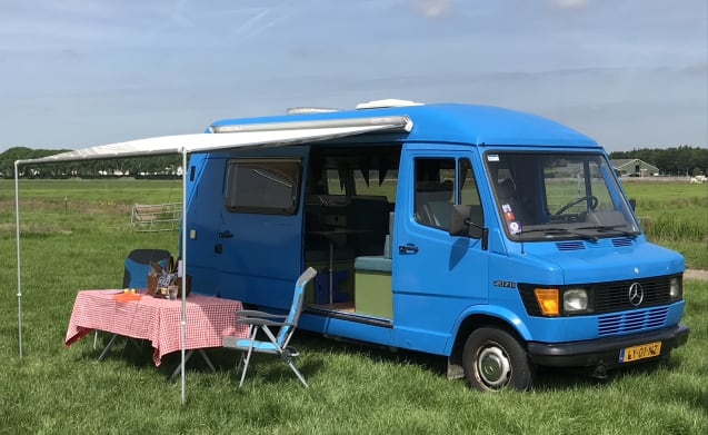 Lynz – Cheerful camper van Westfalia