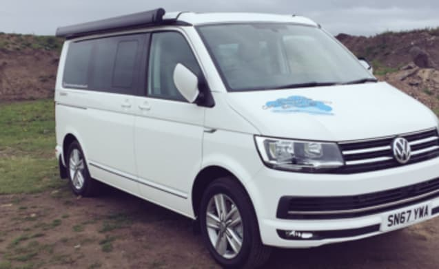 VW California auto camper 2019