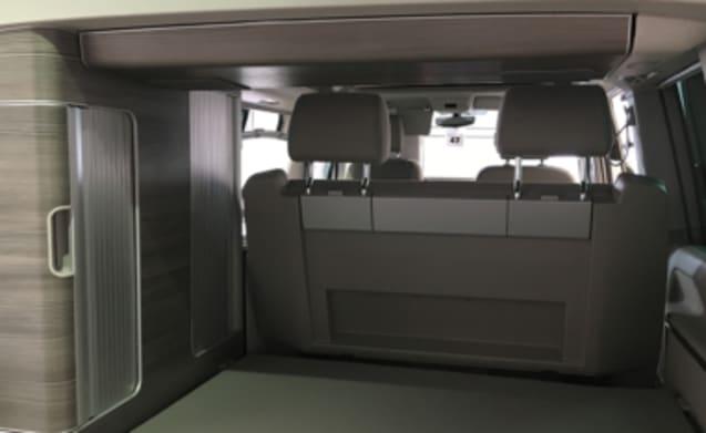 VW California auto camper