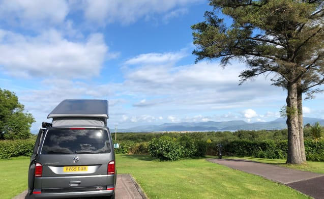 Wilf – 4 Berth VW Transporter T6