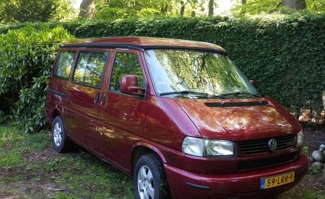Busje Wijsneus – Autobus camper VW Westfalia California Coach 1999 (nessuna prenotazione per il 2020!)