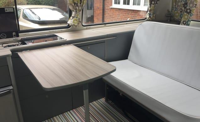 Green Gilbert – Charming, classic VW Bay window Dormobile camper for rent