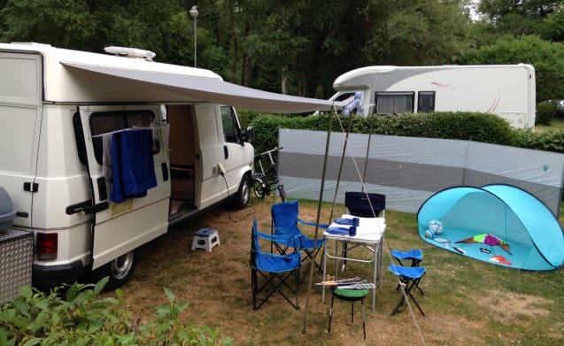 Ruime camperbus  – Camper King