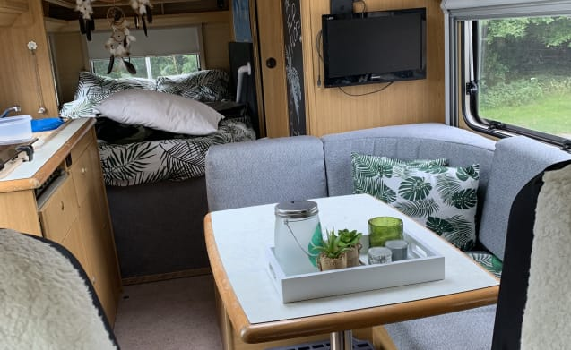 Adventure with the family and your pet! in the 4-person Globetrotter