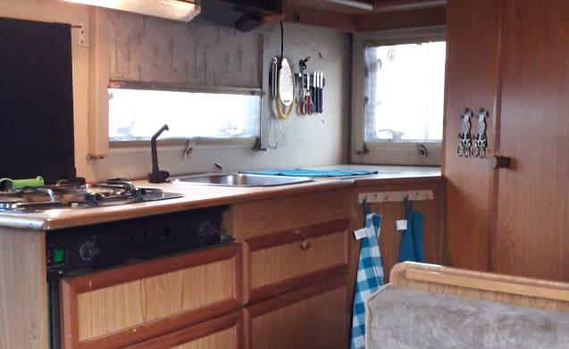 Nice camper for rent