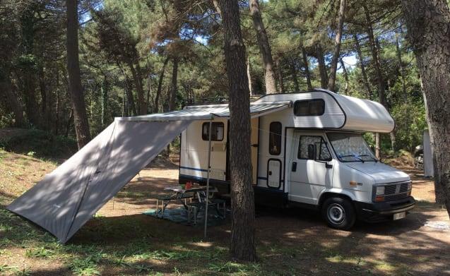 Vintage SafariWays Camper