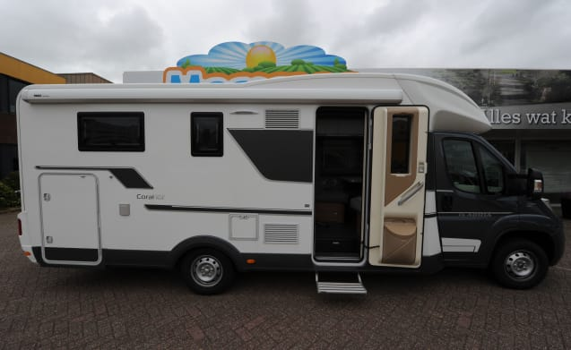 Camper with single beds (4 persons)
