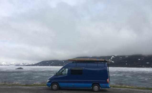 Ruby – Surf & Outdoor Sprinter