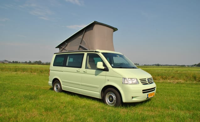 Minty – Fly and Drive - Book in the Netherlands and pick up the VW camper in Portugal!
