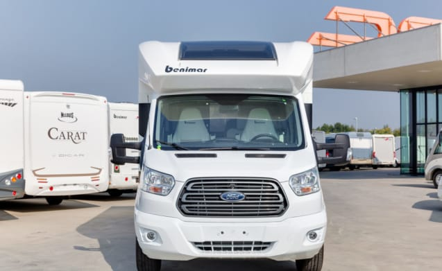 benemar cocoon  – NUOVA BENEMAR COCOON LIMIT EDITION 2019 (FORD) 170 CV