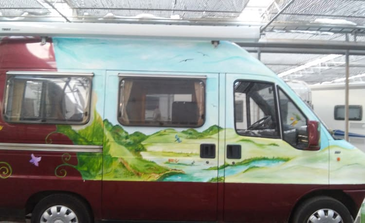Lady – Comfortable, cheerfully pimpered, light Safari bus camper