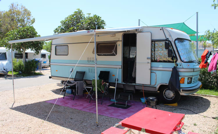 Grote Smurf – Retro Mercedes Hymer camper for real adventurers