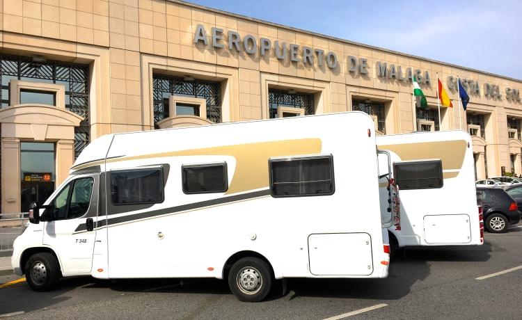 Carado T334 – Discover SPAIN with the camper! Rent a Carado MODEL 2021 now