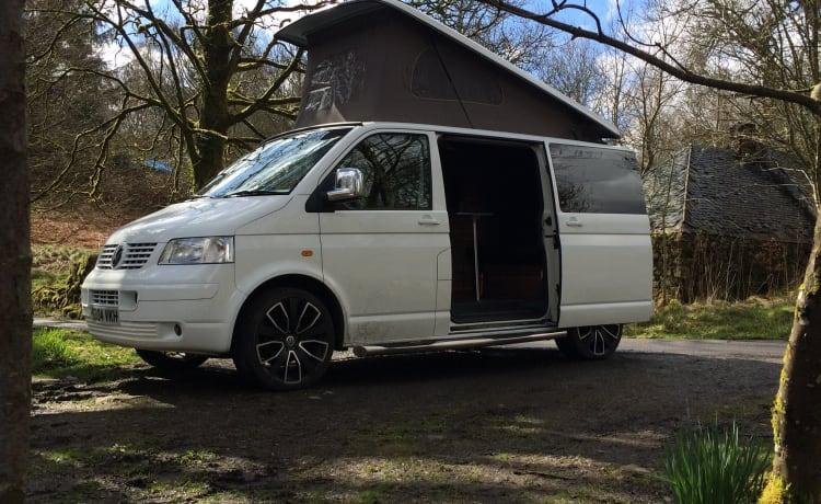Bert – VW T5 3/4 Berth Camper verhuur