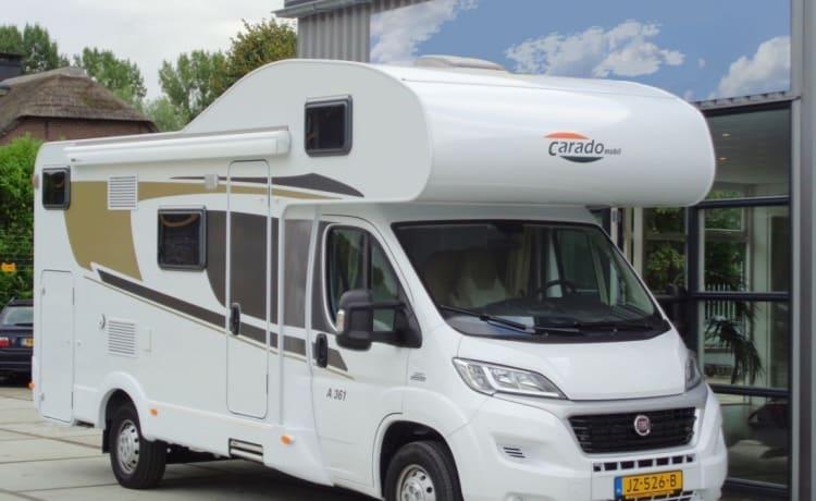 Camper für 6 Personen, Etagenbett / CF6