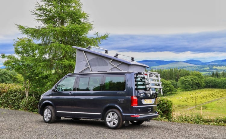 VW California 2017 for hire scotland