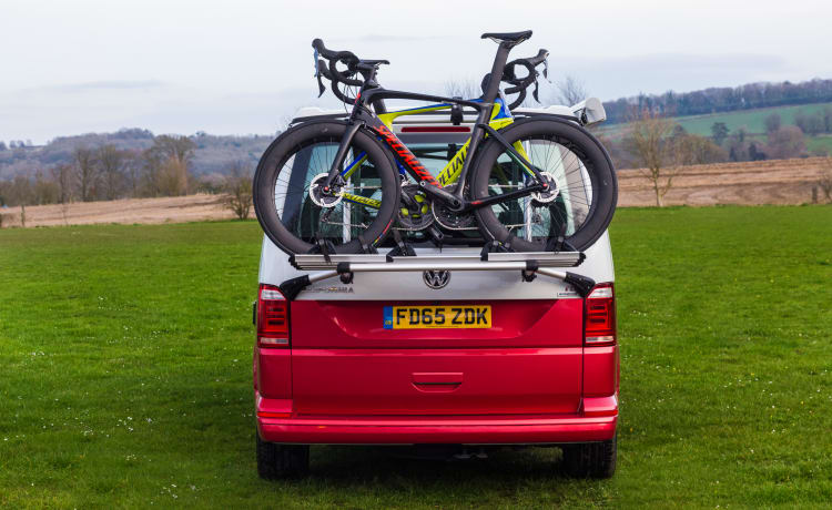 Elsie – VW California Ocean