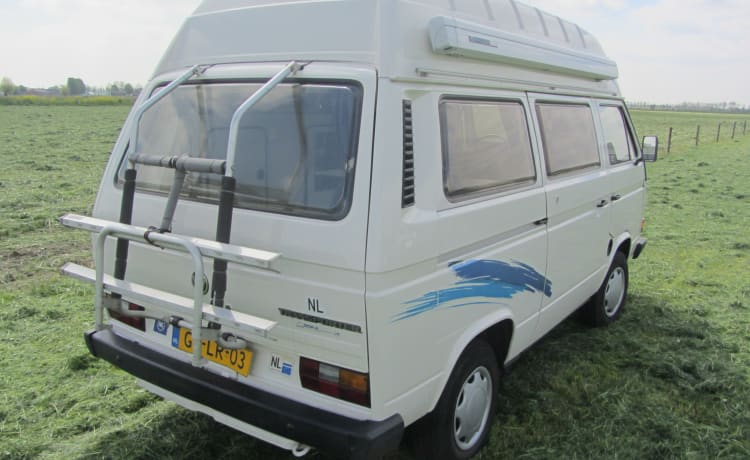 Nizza Volkswagen T3 Buscamper