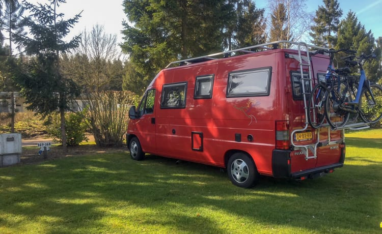 Het rode bussie – Komplett, kompakt, komfortabel und wettbewerbsfähig ist unsere rote Buscamper