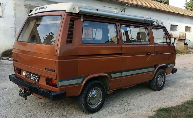 Volkswagen T3 Westfalia Brown