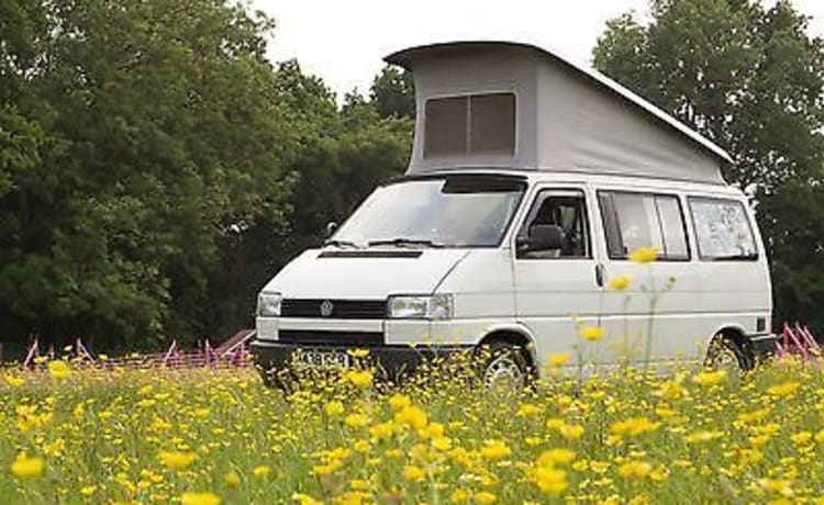 Vw T4 California travel buddy KM-FREE