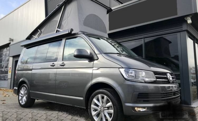 Beautiful Vw California T6 Automatic iridium Grau Automatic