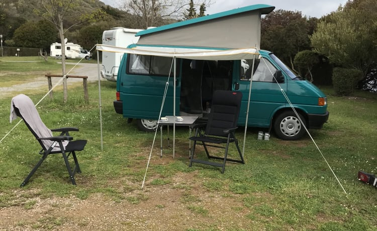 Vw westfalia California bus camper T 4 con max.4 posti letto