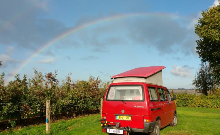 Classic T4 Westfalia for the Netherlands