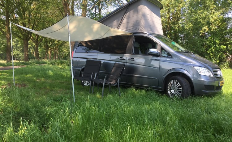 Super Luxe Mercedes Westfalia Camper