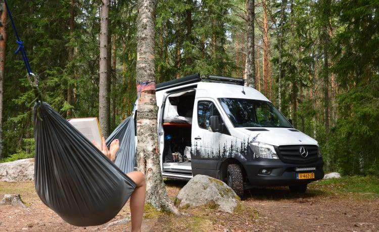 Adventure Van – Avventura Van