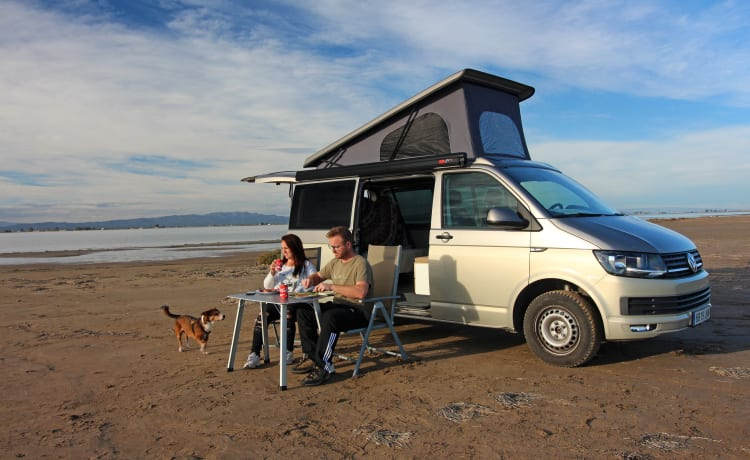 Volkswagen T6 lifting roof