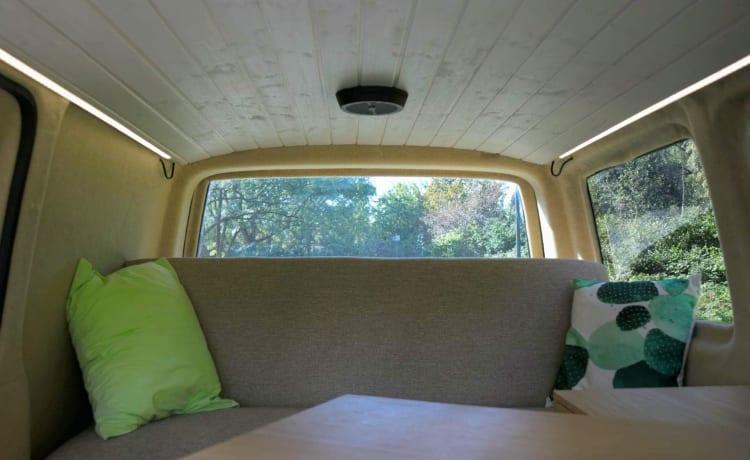 Volkswagen T5 Campervan – Volkswagen T5 Campervan