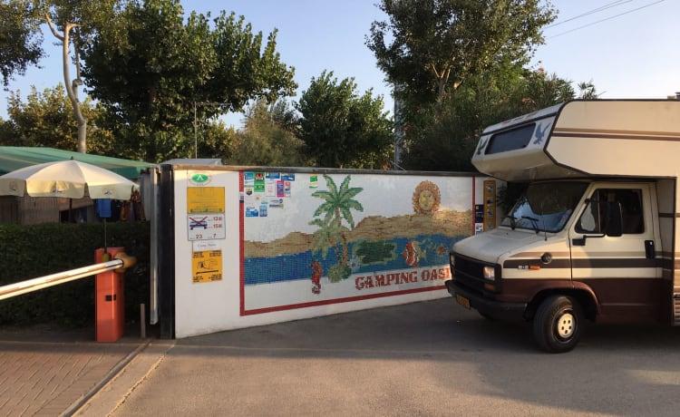 BAROD – Leuke alkoof camper uit 1985 voor 5 personen
